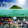 Sunny tropical beach on the island - Foto de Stock
