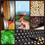 Wine collage. — Stock Photo #22798810