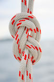Rope tied in a knot — Stock Photo