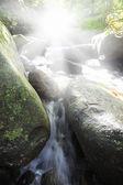 美丽的瀑布 — 图库照片