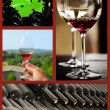 Wine collage. — Stock Photo #25827077