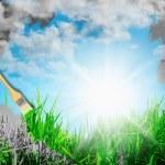 Green grass against a blue sunny sky — Stock Photo #25840271