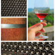 Wine collage. — Stock Photo #25917311