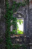 Window in the stone wall — Stock Photo