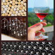 Wine collage. — Stock Photo #27223673