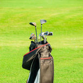 Golf club. Bag with golf clubs — Stock Photo