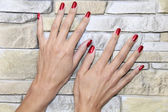 Female Hands - after manicure treatment — Stock Photo