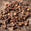Spice cloves — Stock Photo
