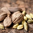 Stock Photo: Green and black cardamom