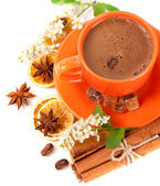 Cup of coffee and spices for your breakfast — Stock Photo