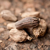 Black cardamom — Stock Photo