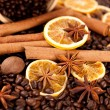 Coffee beans, cinnamon sticks, star anise and nutmeg — Stock Photo #16819625