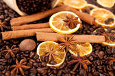 Coffee beans, cinnamon sticks, star anise and nutmeg — Stock Photo