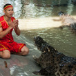 "Stock Photo: ""Show of crocodiles"" in Thailand"