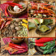 Collage colorful spices — Stock Photo #17186161