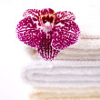Stack of towels and orchid — Stock Photo