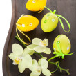 Easter composition — Stock Photo #24900553