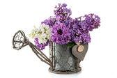 Flowers of lilac — ストック写真