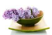 Fleurs lilas — Photo