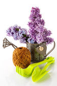 Garden tools and lilac — Stock Photo