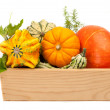 Ripe pumpkin with green leaves in a wooden box — Stock Photo