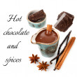 Hot chocolate with spices: vanilla and cinnamon — Stockfoto