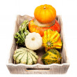 Pumpkins on a wooden tray on a white background — Stock Photo