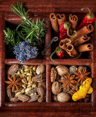 Spices and herbs in old wooden box — Stock Photo