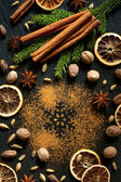 Сinnamon, nutmeg, star anise, cardamom and cloves. Christmas spices — Stock Photo