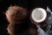 Doğal hindistan cevizi yağı ve hindistan cevizi — Stok fotoğraf