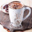 Mug of hot cocoa — Stock Photo #40363855