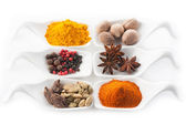 Set of spices in the spoons — Stock Photo