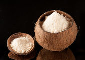 Coconut Flour — Stock Photo