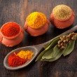 Spices Curry, paprika, bay leaves and coriander. Spice on dark background. — Stock Photo