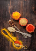 Spices on  dark background. — Stock Photo