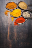 Spices in the spoons. Spice Turmeric, paprika, coriander, masala — Stock Photo