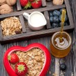 Granola muesli with berries, honey, nuts and milk. Concept of healthy food — Stock Photo #48326379