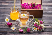 Herbal tea with honey and flowers. Chamomile tea, tea with rose petals and flowers clover. Wild herbs and flowers. — Stock Photo