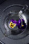 Tea with flowers — Stock Photo