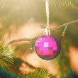 Christmas-tree decorations on a christmas fir-tree — Stock Photo