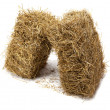 Hay on white background — Stock Photo #13735769