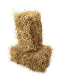 Hay on white background — Stock Photo