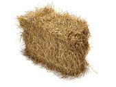 Hay on white background — Stock Photo