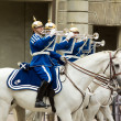 Stock Photo: STOCKHOLM - JULY 23: Changing of guard ceremony with participation of Royal Guard cavalry