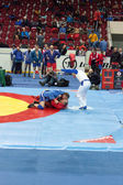 The international tournament on sambo in St. Petersburg on Febru — Photo