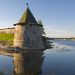 Pskov Kremlin, confluence two rivers — Stock Photo #12471866