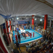 Foto de Stock  : Thai boxing fight club Osminog