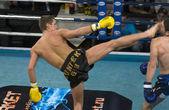 Knockout victory — Stock Photo