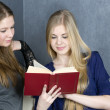 Stock Photo: Two girls reading a book