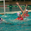 Water polo — Photo